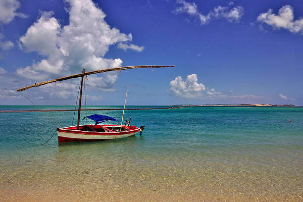 Photograph - Sailboat At Magaruque by Jeremy Hayden