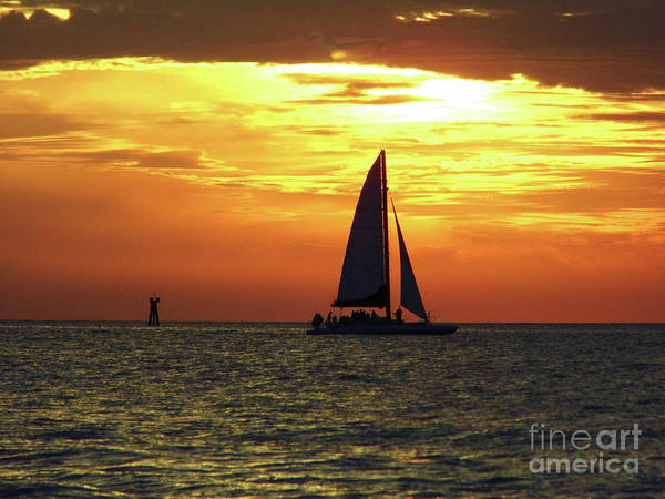 Photograph - Sailboat At Sunset by D Hackett