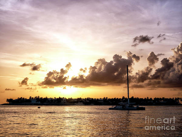Photograph - Key West Sailboat At Sunset by John Rizzuto