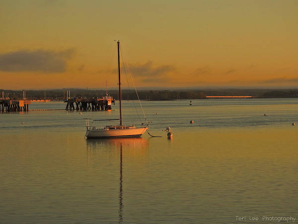 Photograph - Sailboat Glow by Teri Ridlon