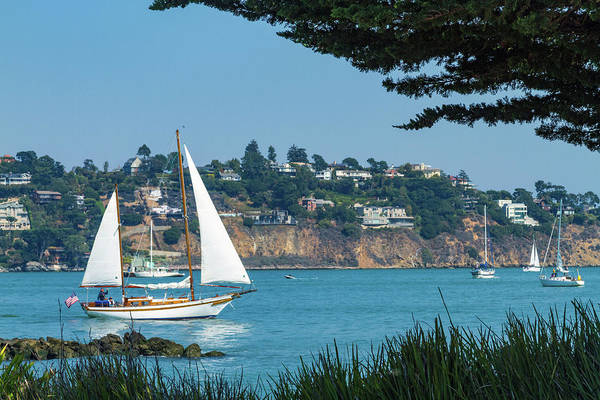 Photograph - Sailboat Heading Out by Bonnie Follett