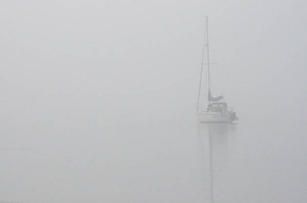 Photograph - Sailboat In Fog by Tim Nyberg