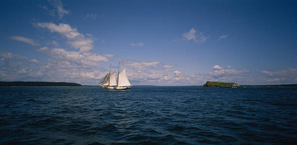 St. Maarten Photograph - Sailboat In The Sea, St. Maarten by Panoramic Images