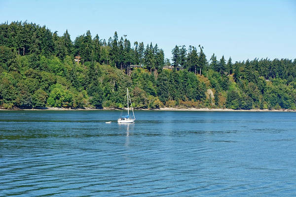 Sailboat Near San Juan Islands Art Print