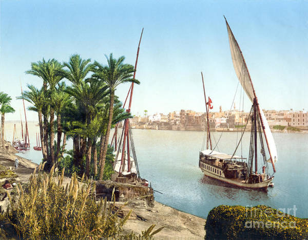 Painting - Sailboat On The Nile by Celestial Images