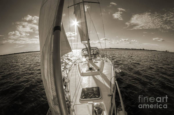 Wall Art - Photograph - Sailboat Sailing Charleston South Carolina by Dustin K Ryan