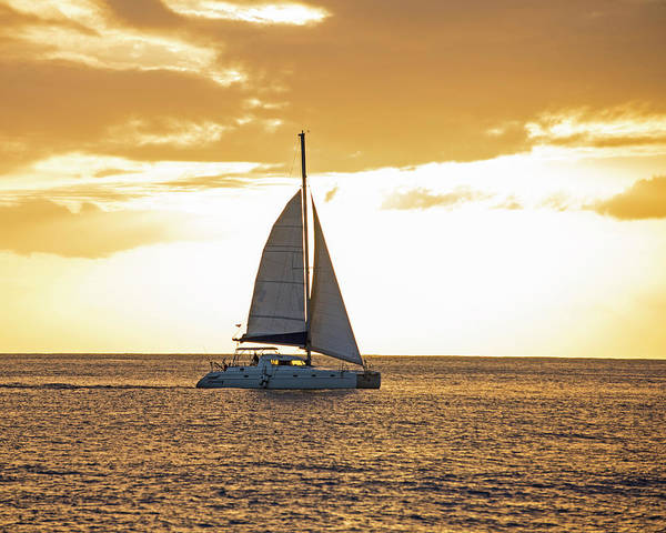 Photograph - Sailboat Sailing Off Of Anse Chastanet At Sunset Saint Lucia Caribbean  by Toby McGuire