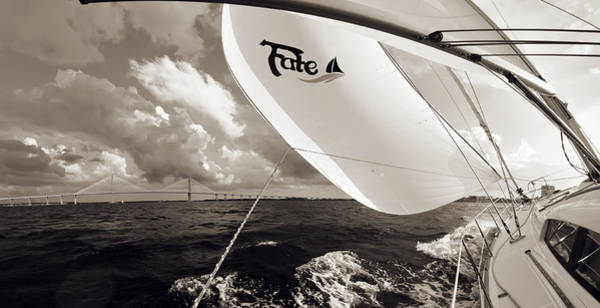 Wall Art - Photograph - Sailboat Spinnaker Fate Beneteau 49 Charleston Sc  by Dustin K Ryan