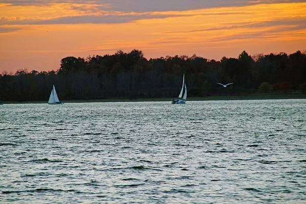 Photograph - Sailboats And Orange Skies by Mike Murdock