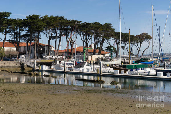 Photograph - Sailboats At St Francis Yacht Club Harbor San Francisco California Dsc3097 by Wingsdomain Art and Photography