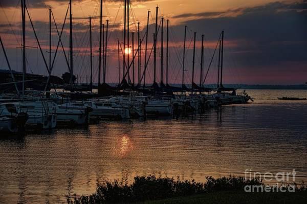 Photograph - Sailboats Docked by Diana Mary Sharpton