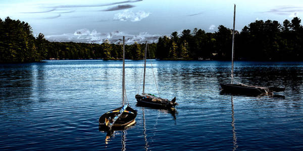 Photograph - Sailboats On The Lake by David Patterson
