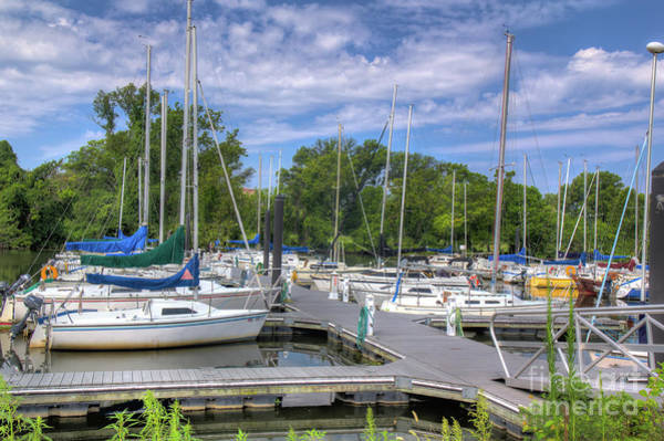 Photograph - Sailboats by Rod Best