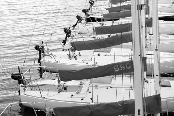 Photograph - Sailboats by SR Green