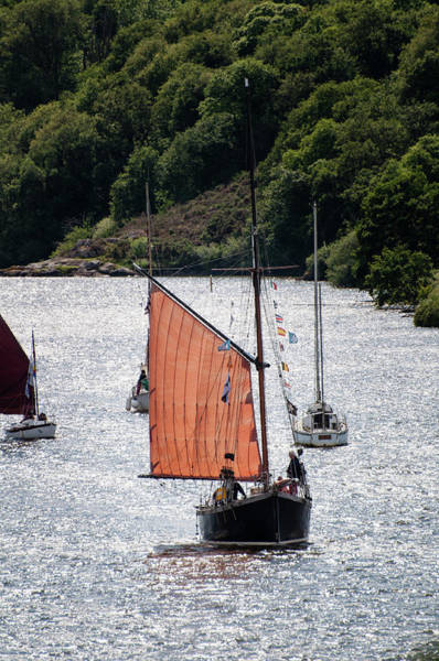 Photograph - Sailing 46 by Geoff Smith