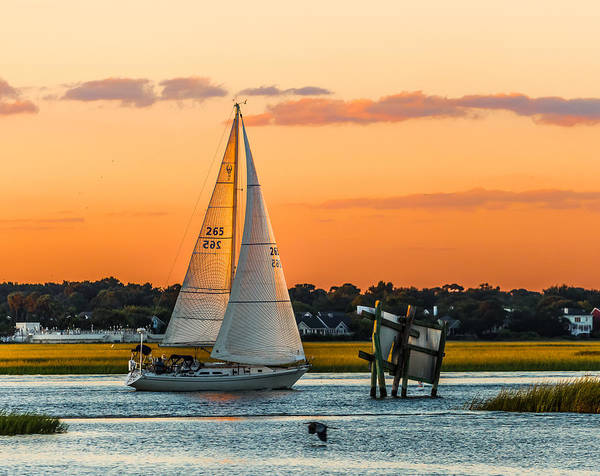 Photograph - Sailing Along #2 by Donnie Whitaker