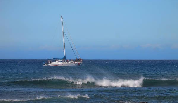 Photograph - Sailing And Sunshine by Pamela Walton