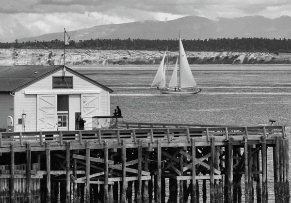 Dock Of The Bay Photograph - Sailing At Neah Bay Black And White by Dan Sproul