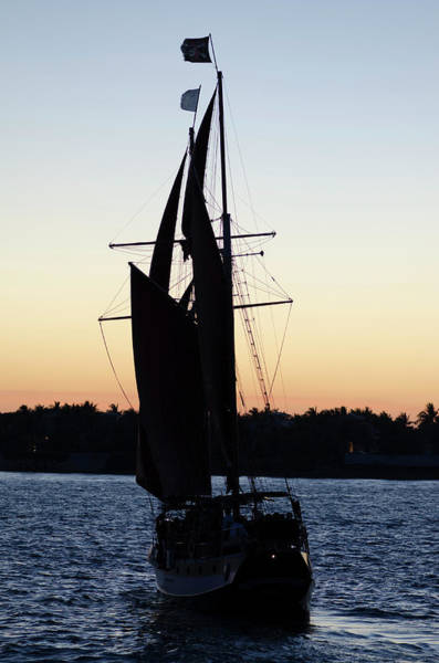 Photograph - Sailing At Sunset by Jim Shackett
