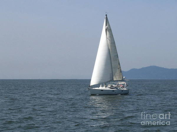 Photograph - Sailing Away by Vivian Martin