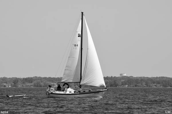 Wall Art - Photograph - Sailing Black And White by Lisa Wooten