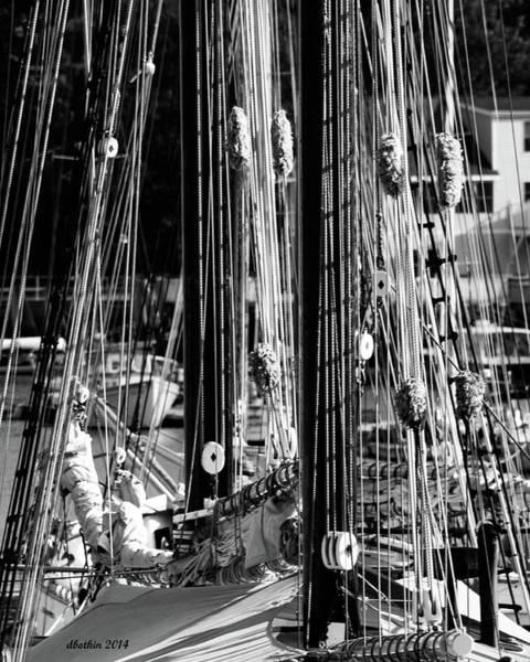 Wall Art - Photograph - Sailing Camden Maine by Dick Botkin