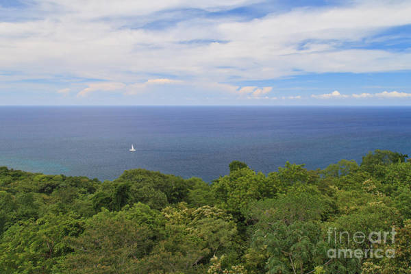 Photograph - Sailing Free by Charles Kozierok