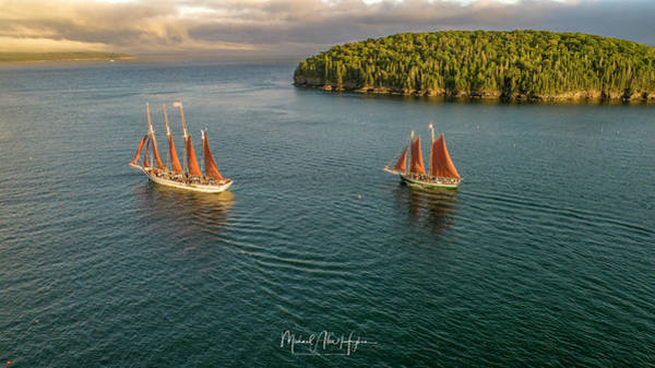 Photograph - Sailing Frenchman Bay by Michael Hughes