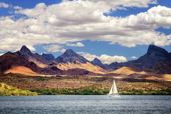 Sailing In Havasu Art Print
