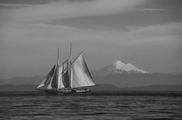 Sailing In Pacific Northwest Art Print