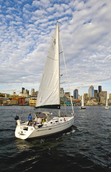 Sailing In Seattle Art Print by Tom Dowd