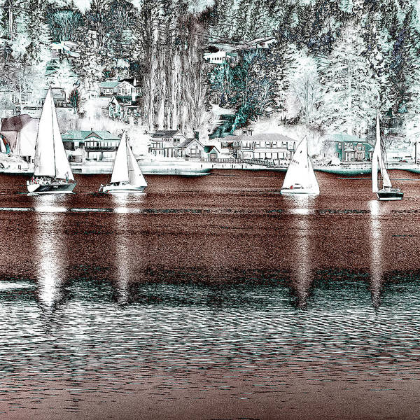 Photograph - Sailing In The Harbor by David Patterson