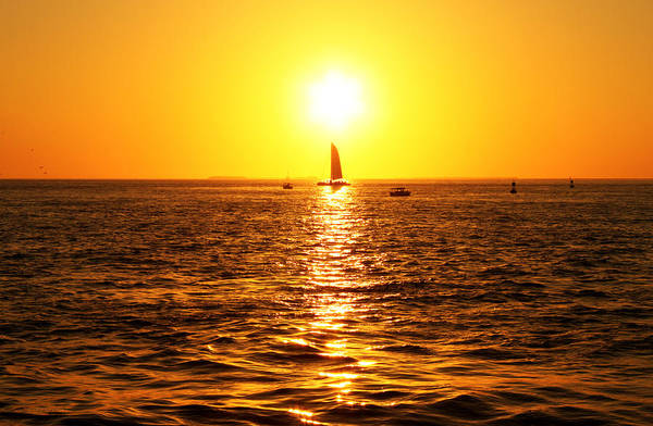 Photograph - Sailing Into The Sunset by Susan Vineyard