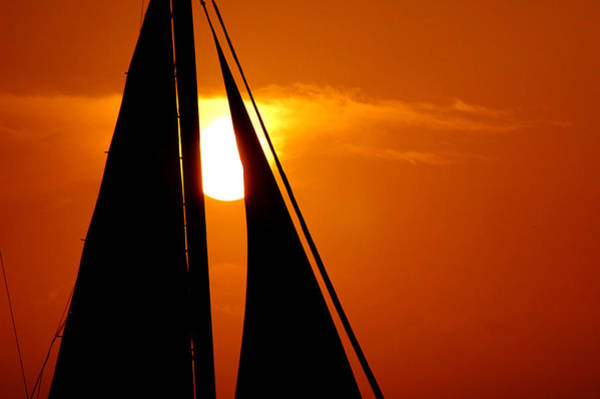 Photograph - Sailing Into The Sunset by Susanne Van Hulst