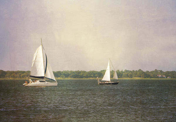 Photograph - Sailing by Michael Colgate