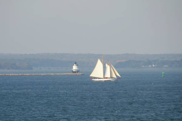 Photograph - Sailing Off Bug Light - Cape Elizabeth Maine by Bill Cannon