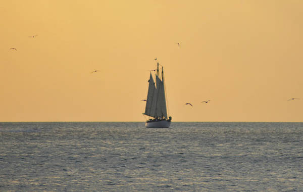 Photograph - Sailing Off Of Key West by Bill Cannon