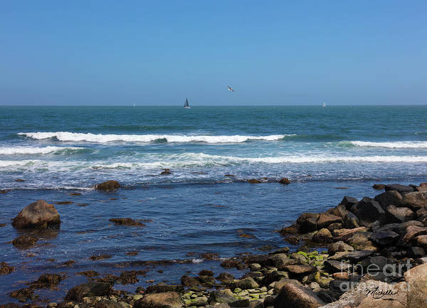 Wall Art - Photograph - Sailing Off The Coast At Narragansett Pier by Michelle Constantine