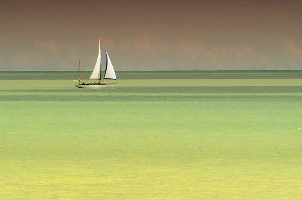 Photograph - Sailing On A Golden Ocean by Stephen Barrie