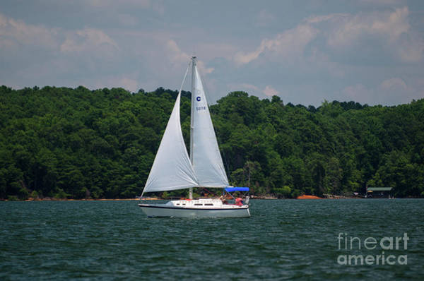 Photograph - Sailing On Lake Hartwell by Dale Powell