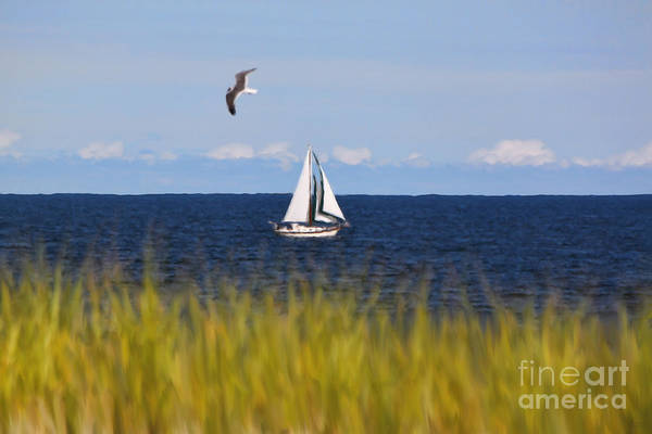 Photograph - Sailing On Long Beach Island by Jeff Breiman