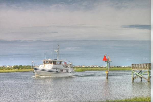 Photograph - Sailing by Ree Reid