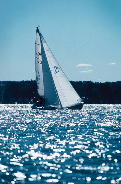 Photograph - Sailing  by Steve Somerville