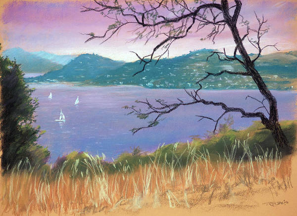 Painting - Sailing The Bay by Christopher Reid