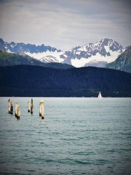Wall Art - Photograph - Sailing Through Alaska by Hailee Tocco