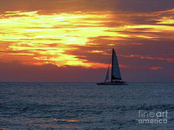 Photograph - Sailing With Fire In The Sky by D Hackett