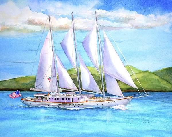 Wall Art - Painting - Sailing Yacht British Virgin Islands by Carlin Blahnik CarlinArtWatercolor