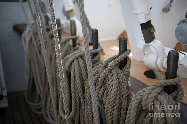 Photograph - Sailors Knot by Dale Powell