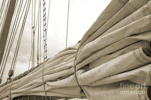 Photograph - Sails Are Down 2 by Kathi Shotwell