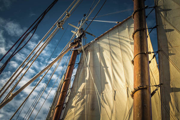 Photograph - Sails In The Breeze by Jeanette Fellows